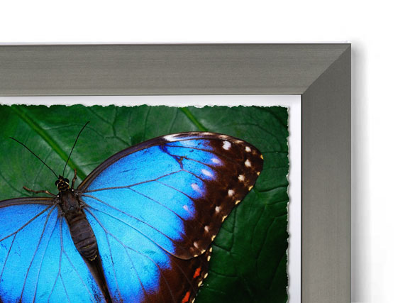 Dark Pewter Metal - Box Frame