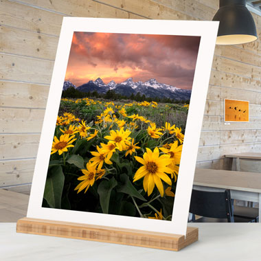 Gallery Boards Prints on Mat Board from Bay Photo Lab